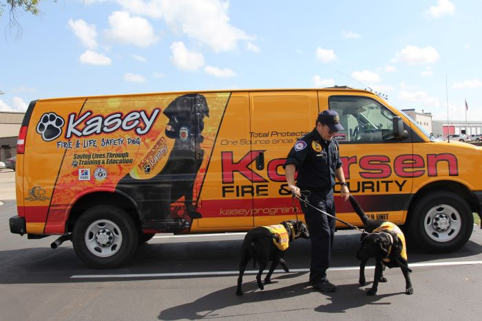 Kasey Dogs and Van